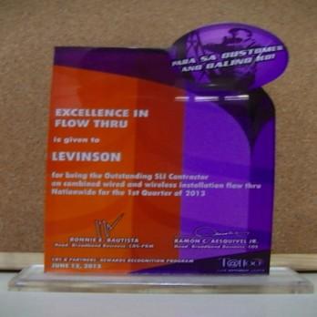 Excellence in Flow Thru Levinson Ist Quarter 2013